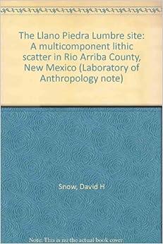 The Llano Piedra Lumbre site: A multicomponent lithic