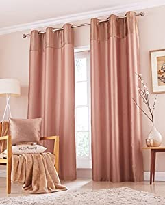 Cyrene Mink 46x72 Faux Silk Velvet Lined Ring Top Curtains #vlevlupo *tur*