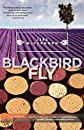 Blackbird Fly   [BLACKBIRD FLY] [Paperback]