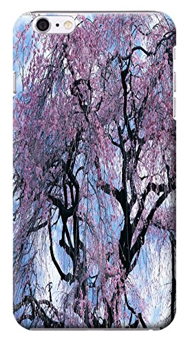 Fantastic Faye Cell Phone Cases For Iphone 6 No.1 The Beautiful Design With Japanese Cherry