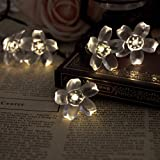 Lycheers 5m 50 Led Blossom Solar Fairy Lights for Gardens - Homes - Christmas - Partys - Weddings (Warm White)