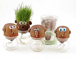 EZ Life Ez Life Diy Grass Head Grow Your Own Grass Head Plant And Style It!