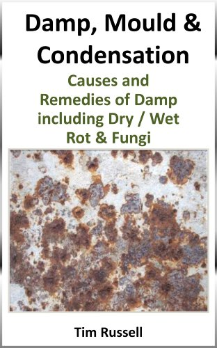 damp-mould-condensation-including-causes-and-remedies-of-fungi-dry-wet-rot-and-timber-preservatives