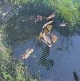 Teichnetz grobmaschig 8x6 Meter