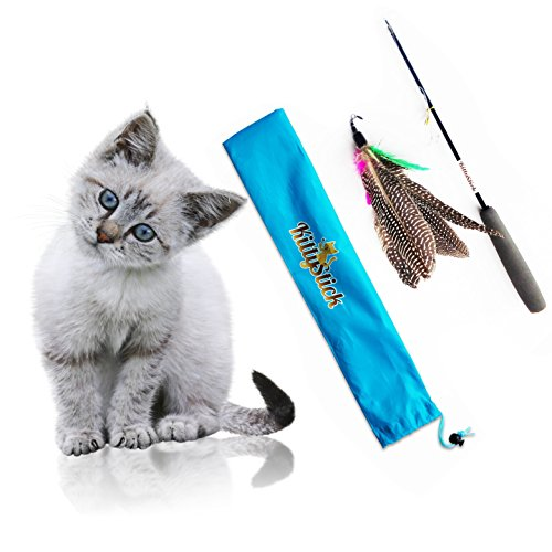 Fun Cat Toys : Easyology pets feather kittystick cat toys pet supplies