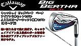 Callaway(キャロウェイ) 2015 BIG BERTHA BETA アイアン AIR SPEEDER FOR BIG BERTHA カーボンシャフト 6本セット(#5-9,PW) (FLEX-SR)