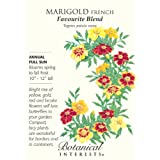 French Marigolds Favorite Blend Seeds