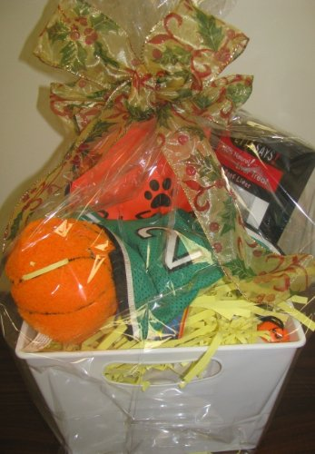 Holiday Basketball Themed Canine Gift Basket Includes a Green or Purple Pro-style Basketball Dog Jersey