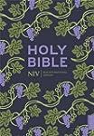 NIV Holy Bible (Hodder Classics)