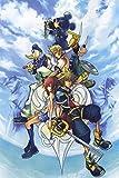 Kingdom Hearts 2 3 Sora Organization XIII 13 Nice Silk Fabric Cloth Wall Poster Print (20x13inch)