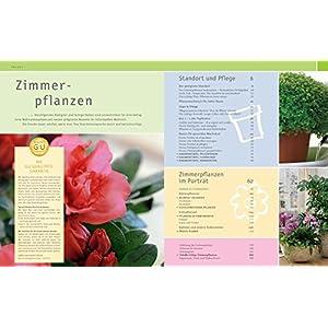 Zimmerpflanzen: Die 200 schönsten Arten für jeden Standort und jeden Wohnstil (GU Sonderleistung G