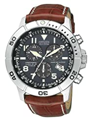 Citizen BL5250 02L Eco Drive Leather Titanium