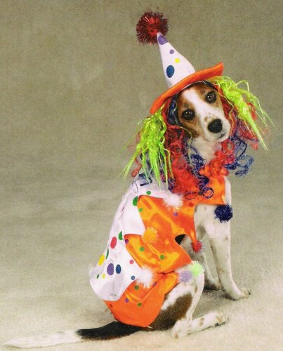 X-SMALL - CLASS CLOWN - Pet Halloween Costume