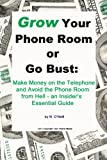img - for Grow Your Phone Room or Go Bust: Make Money on the Telephone and Avoid the Phone Room from Hell - An Insider's Essential Guide (Ebook) book / textbook / text book