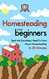 img - for Homesteading For Beginners: Teach Me Everything I Need To Know About Homesteading In 30 Minutes (Homesteading - Mini Farming - Self Sufficiency - Gardening - Urban Survival) book / textbook / text book