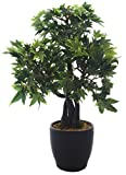 Fourwalls 39 cm tall Classic Artificial Japanese Maple Plant in a glossy ceramic pot