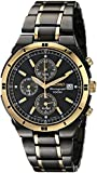 Seiko Men's SNAA30 Stainless Steel Two-Tone Watch