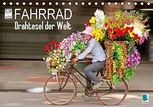 Fahrrad - Drahtesel der Contusion (Tischkalender 2016 DIN A5 quer): Fahrrad: Mehr als ein Fortbewegungsmittel (Monatskalender, 14 Seiten) (CALVENDO Mobilitaet)