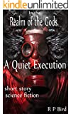 A Quiet Execution: A Short Story from the Realm of The Gods