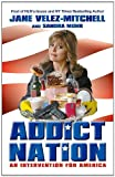 img - for Addict Nation: An Intervention for America book / textbook / text book