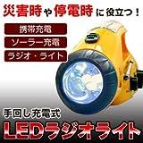 【Amazonから即日発送】緊急時の必需品 ソーラー充電&手回しハンディライト ラジオ