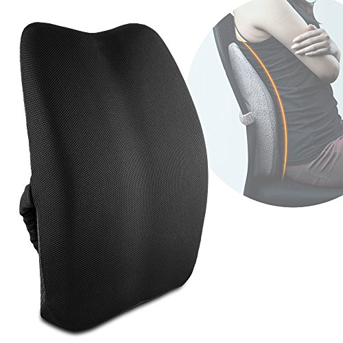Best Review Of Memory Foam 3D Ventilative Mesh Lumbar Support Back Cushion Pillow to Properly Align ...