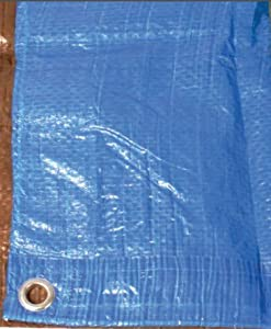 Texsport Reinforced Rip-stop Polyethylene Tarp Blue 12 X 14-feet