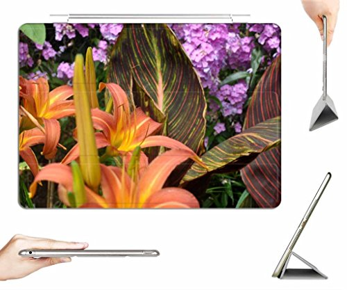 irocket-ipad-mini-1-2-3-case-transparent-back-cover-day-lilies-and-canna-tropicana-foliage-and-flowe