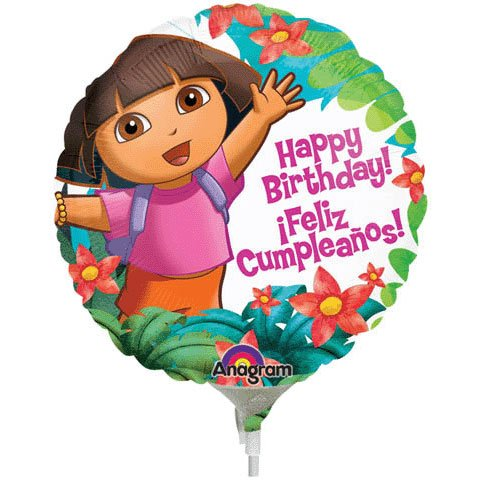 Dora The Explorer Birthday Mini