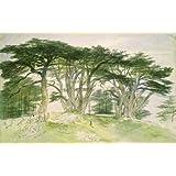 Cedars of Lebanon, by Edward Lear (V&A Custom Print)
