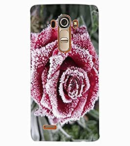 ColourCraft Beautiful Rose Design Back Case Cover for LG G4