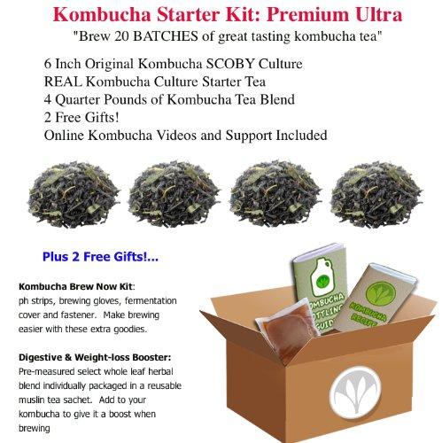 getkombucha, KOMBUCHA STARTER KIT, Make Raw Organic Kombucha Tea Starter Kit (6 inch Original Kombucha SCOBY Culture + REAL Kombucha Culture Starter Tea) Kombucha Recipes Included (PREMIUM ULTRA: 1 PREMIUM Kombucha Starter Kit + 4 Quarter Pounds of Kombucha Tea Blend + 2 FREE GIFTS! (Brew 20 BATCHES of great tasting kombucha tea))