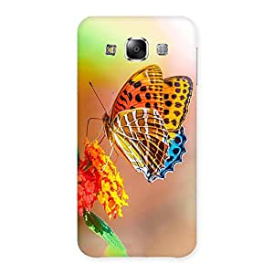Special Queen Butterfly Back Case Cover for Samsung Galaxy E5