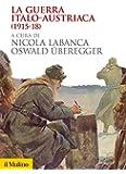 La guerra italo-austriaca: (1915-1918)