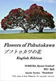Flowers of Pohutukawa: English Edition (Revised)