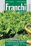 Franchi Chicory Zuccherino of Trieste