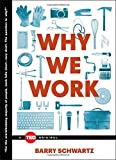 img - for Why We Work (TED Books) book / textbook / text book