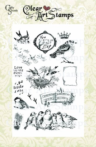 Crafty Secrets Medium Art Stamp, Bird Notes, Clear