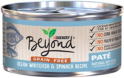 Purina Beyond Paté Grain Free Ocean Whitefish & Spinach Recipe Wet Cat Food