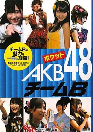 ポケットAKB48チームB