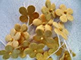 Flowers GOLD sheen Mulberry Paper approx 18mm x 40 flowers with stems