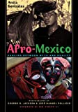 img - for Afro-Mexico: Dancing between Myth and Reality book / textbook / text book