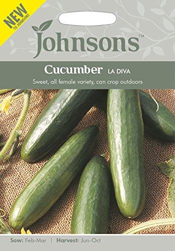 johnsons-seeds-pictorial-pack-vegetable-cucumber-la-diva-20-seeds