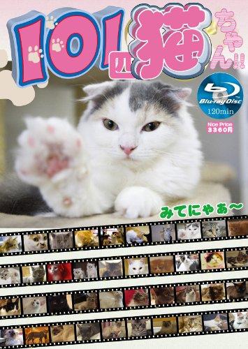 101匹猫ちゃん [Blu-ray]