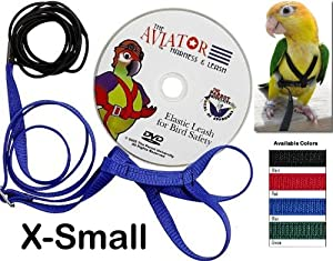 Aviator Harness and Leash X-Small Black