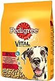 Pedigree Dry Dog Food Large Dog Beef 15kg