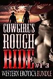 Cowgirl's Rough Ride: Western Erotica Bundle