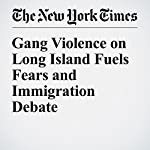 Gang Violence on Long Island Fuels Fears and Immigration Debate | Liz Robbins,Alan Feuer