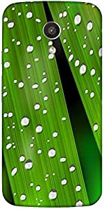 Snoogg Realistic Green Plant Designer Protective Back Case Cover For Motorola...