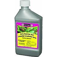 ferti-lome Spinosad Lawn & Garden Insect Spray-16 OZ BORER LEAFMINER
